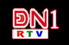 ĐN1 (Đồng Nai 1)